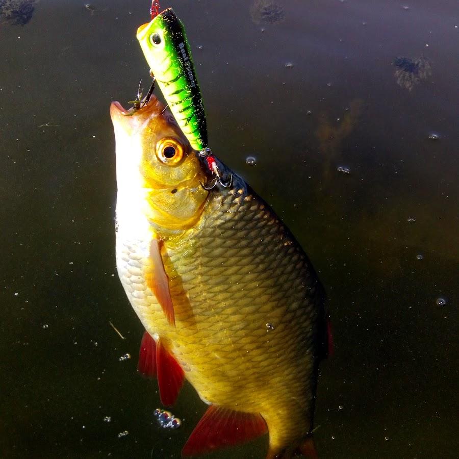 ахтуба рыбалка без границ