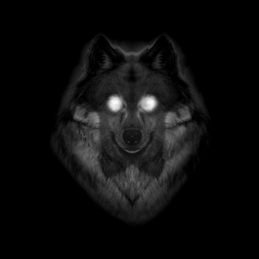 JOE BONAMASSA  Muddy Wolf at Red Rocks  amazoncom