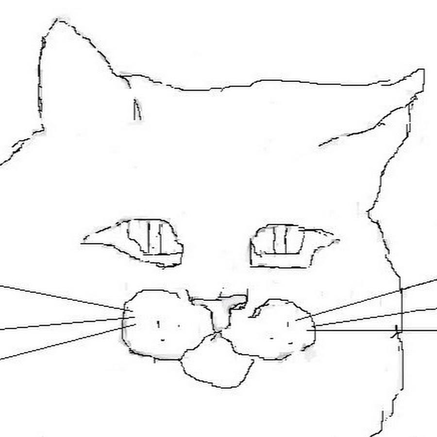 Как рисовать кота в паинт нет