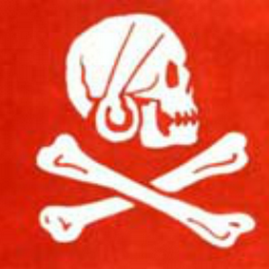 pirate flag essays