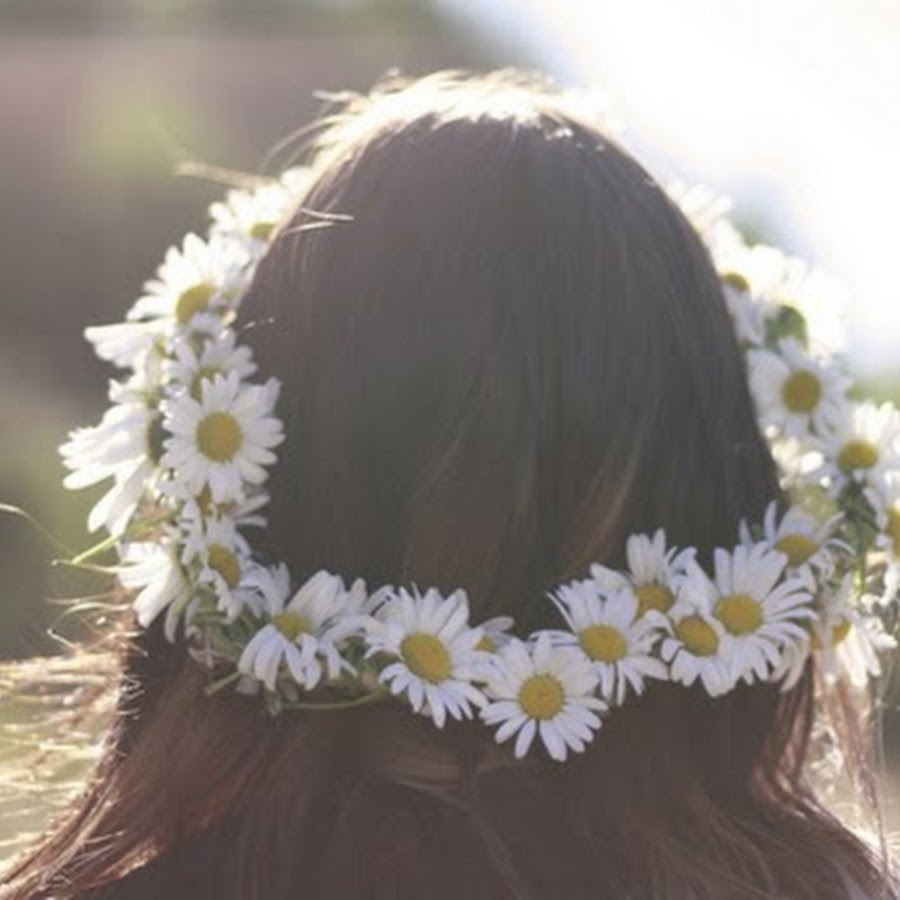 Daisy flower crown tumblr animalcarecollegefo daisy flower crown tumblr izmirmasajfo