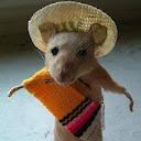 The Sombrero Ranchero