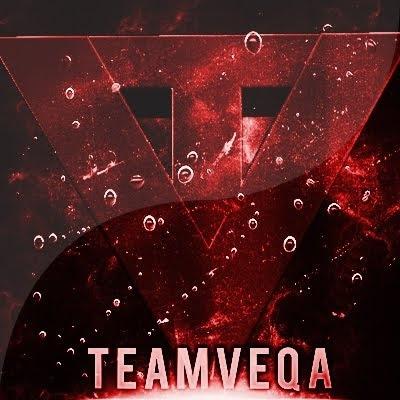TeamVeqa