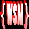 {WSM WorldStarModz- WSM}