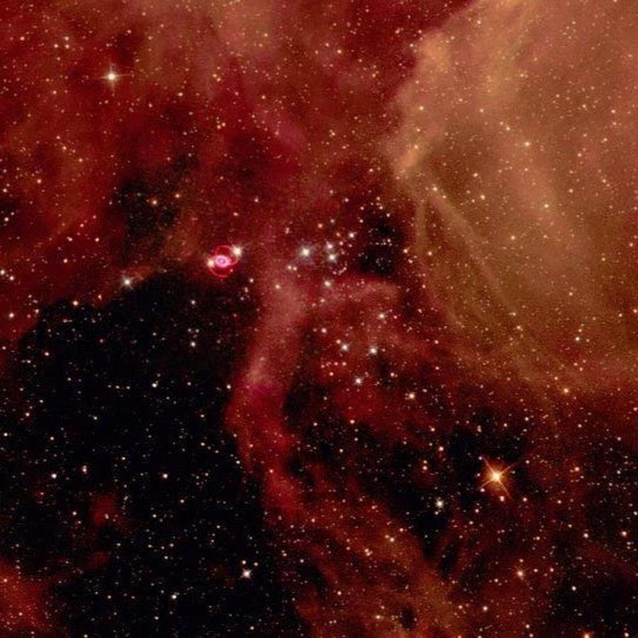 Elles ont joué et jouent encore un rôle essentiel dans lhistoire de lUnivers car cest lors de son explosion en supernova que létoile libère les éléments
