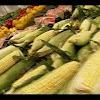 Nofrills Supermarkets