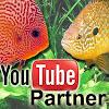 FischbottichTV Nils