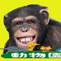 伝説のオコリザル【サブチャンネル】