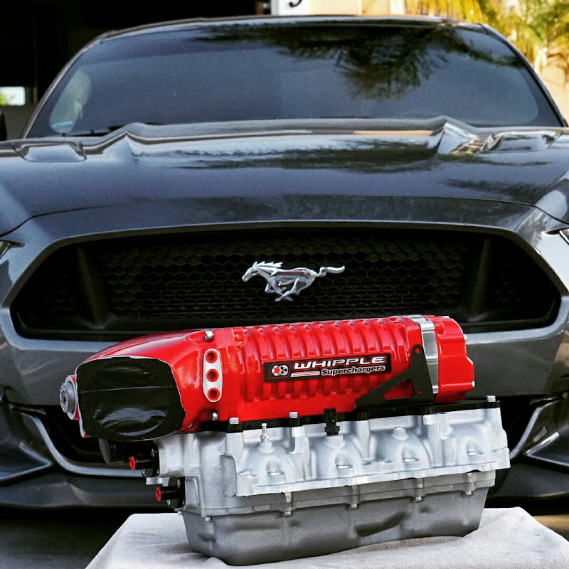 Whipple Supercharger Installation Manual Mustang: 2016 Mustang GT Whipple Supercharger!