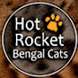 Hot Rocket Bengal Cats video