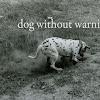 dogwithoutwarning