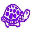 PurpleTurtleX23