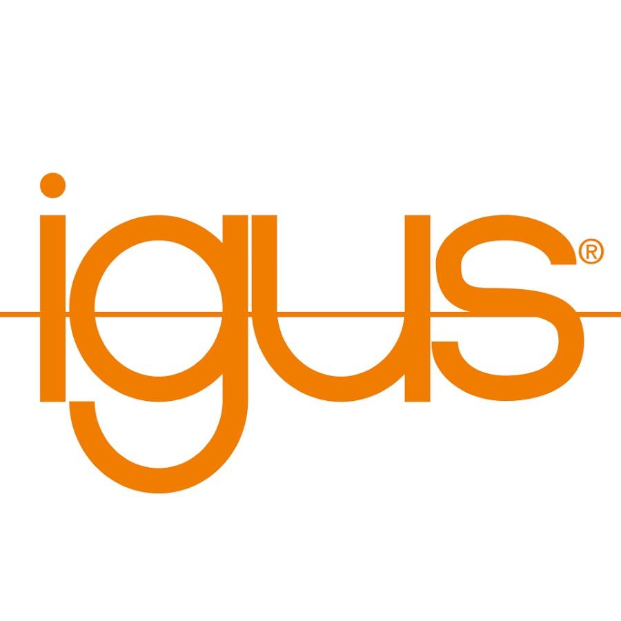 www.igus.com.mx