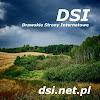 DSI+ - Drawskie Strony Internetowe w Google+