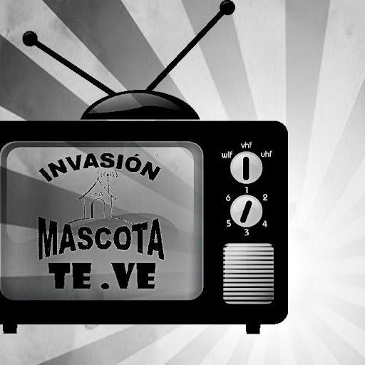 Invasión Mascota