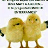 euchimel De Leon Mateo