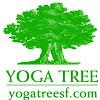 yogatreesf