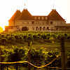 chateauwinery