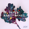 Paper Aeroplanes Official