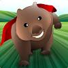 Wonder Wombat