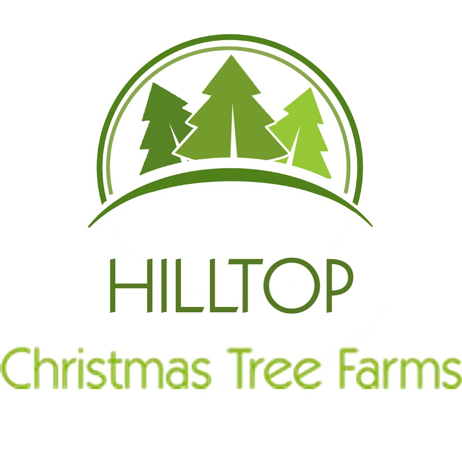 Image result for Get Quality Christmas Tree Delivery From Hilltop Tree Farm