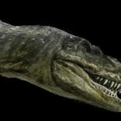 TyrannosaurusBataar