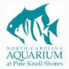 NC Aquarium at Pine Knoll Shores