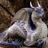 Dragonmasque