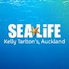 Sea Life Kelly Tarlton's