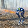 Michigan Robotics: Dynamic Legged Locomotion Lab