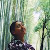 The Japanese Traveler