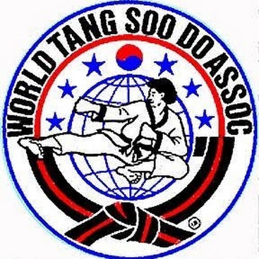 essay on tang soo do