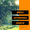 Small Actionable Habits