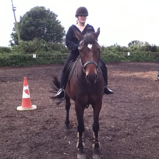 horseystuff2012
