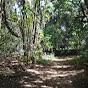 Parque Augusta Já