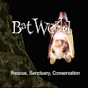 Bat World Sanctuary