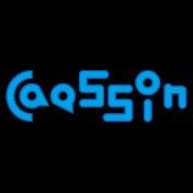 CAESSIN
