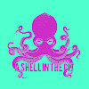 ashellinthepit