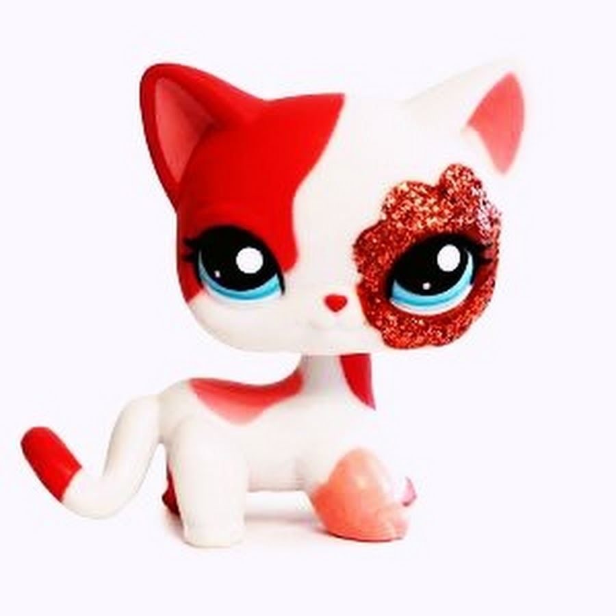Pink cat toy ms
