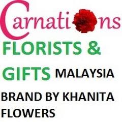 Carnations My