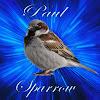 Paul Sparrow
