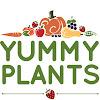 Yummy Plants