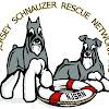 New Jersey Schnauzer Rescue Network