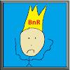 BnRVentCast