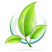 pflanzenkundetv