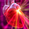 HeartBDoctor