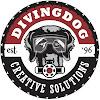 DivingDogMultimedia