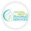 VenturaCounty AnimalServices