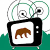 Grizzly Video Productions