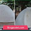 biogas việt